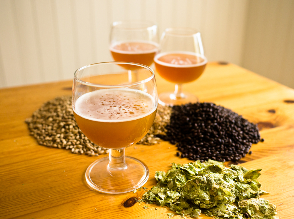 The Growing Trend of Home Brewing