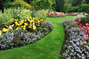 How to Modernize Landscapes at Older Rental Properties