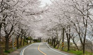 On the Road Again: Propertyware Spring Events